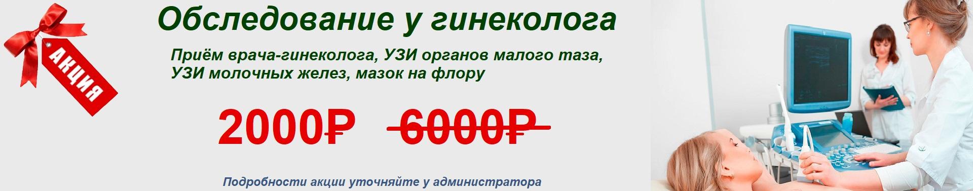 ginek377